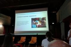 CDH: accessibilità ai racconti